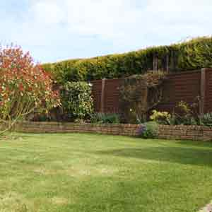 view of garden after gardening services